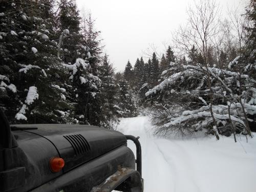 Дальше дорог нет, только на снегоходе